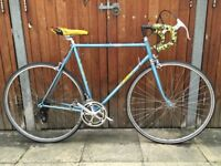 Vintage Italian racing bike - GIBI - 56cm / 22inch - Serviced with Camapgnolo & Modolo components