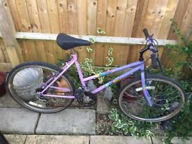 Ladies Bike, Good condition, Serviced, Free Lights, Delivery. Warranty