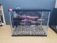 Fish tank 17 litres