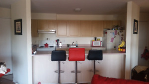 Room in large open concept 2 bedroom apartment