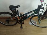 Good bike + new Lock