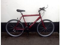 "GENTS RED MOUNTAIN BIKE 20"" FRAME £45"