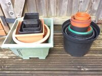 Flower pots free to collector