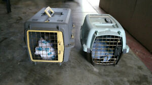 Pet transfer cage