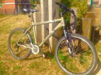 Giant hybrid bike
