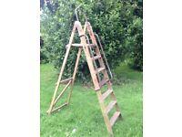 Authentic original wooden decorators ladders