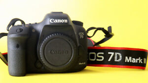 Canon 7D2、EF 28-300mm f/3.5-5.6L IS USM Lens