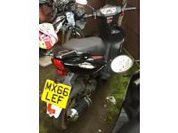 50 cc ped £400 today brand New 5 month old