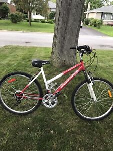 Like New Cruiser Bicycle For Sale