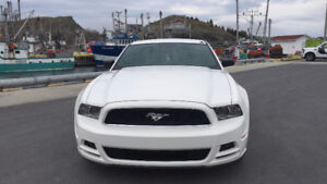2013 Ford Mustang V6 Premium Coupe (2 door)