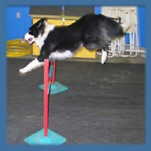 Dog Obedience or Agility Classes.  NOW REGISTERING!!