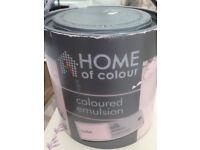 Silk Emulsion Paint - Pink