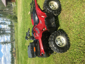 Well taken of quad for sale