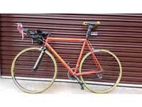 Quintana Roo Road Time Trial Bike L/XL