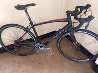 Specialized secteur custom built road bike