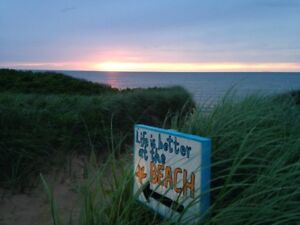 1 bedroon cottage at the beach! reduced price!
