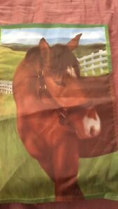 Horse flag and picture
