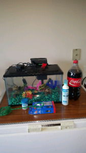 Fish tank and everything you need