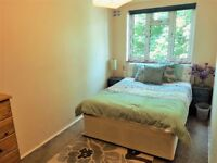 Bright and Spacious room in friendly flatshare