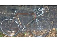 XL (23in) 10-Speed Raleigh Magnum Vintage Bike in Working Order