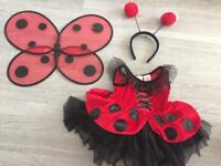 Ladybug fancy dress costume 12-18months