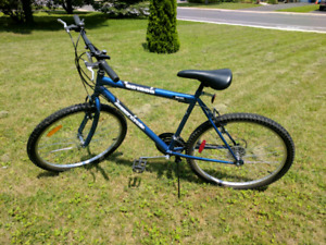 Blue Super Cycle for sale