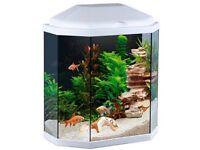 Ciano Aqua Hex 30 LED White fish tank