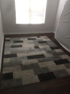 Area rug *like new, bought brand new in Jan 2017