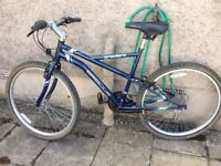 BOYS/GIRLS,LADIES/GENTS,APOLLO MOUNTAIN BIKE/CYCLE, IT IS IN VERY GOOD CONDITION, 21 GEARS, 19 inch