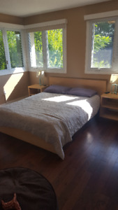 Queen Size Mattress and Ikea Bed with Side Tables