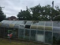 Large FREE Green House - FREE - will need to be collected and dismantled.