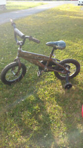 Small boys bike with training wheels