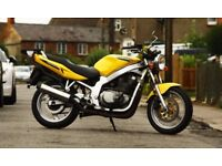 Suzuki gs500 with MOT