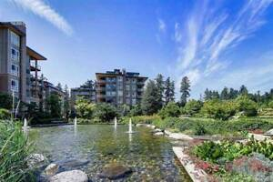 2 bed + Den, New and Spacious UBC Apartment (Wesbrook Village)