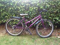 Ladies crystal bike