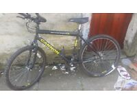 GENTS MOUNTAIN BIKE FOR SALE