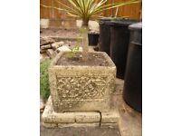 Stone Planters X 2