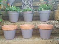 "Hand Painted 8"" Terracotta Garden Pots 3 for £5.00. Plants extra!"