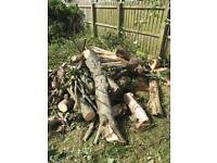 Logs fire wood