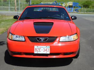 1999 Ford Mustang Convertible 35th anniversary special edition