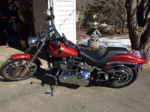 2007 soft tail custom