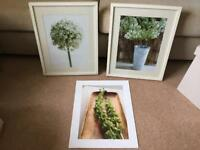 Ikea pictures