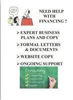 PROFESSIONAL BUSINESS PLANS, COPY, ETC.- GREAT PRICES!