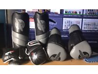 MMA training gloves, shin guards and boxing gloves