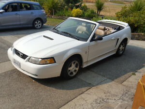 2000 Ford Mustang Leather Convertible
