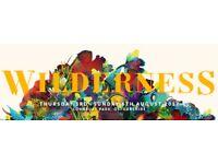 Wilderness festival ticket X 2 - 3rd - 6th August