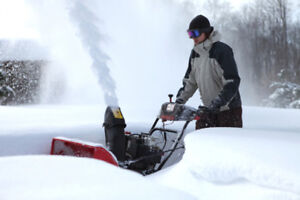 GET READY IN ADVANCE FOR SNOWBLOWERS - TUNE UP!!!!