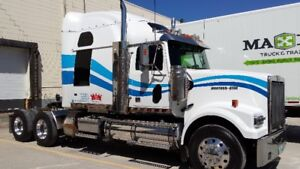 2008 Western Star 4900 for sale