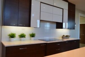 Cabinets and Cupboards/Shelving