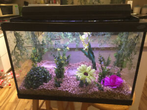 Great Medium Size Reptile Tank With Decor For Sale